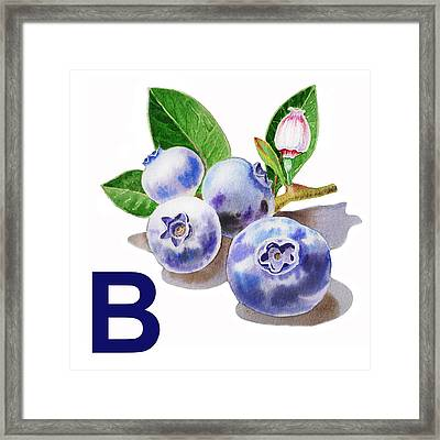 B Art Alphabet For Kids Room Framed Print by Irina Sztukowski