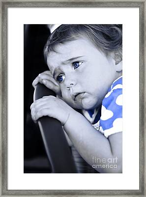 Baby Blues Framed Print by Jorgo Photography - Wall Art Gallery