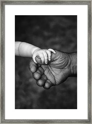 Babys Hand Holding On To Adult Hand Framed Print