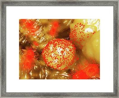 Bacilli Framed Print by Juan Gaertner