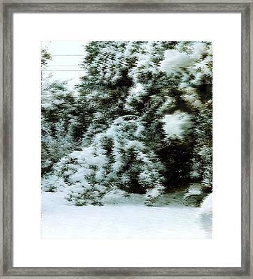 Backyard Snow Framed Print by Elaine Williams