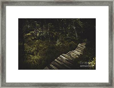 Ballroom Forest On The Dove Lake Walking Track Framed Print by Jorgo Photography - Wall Art Gallery