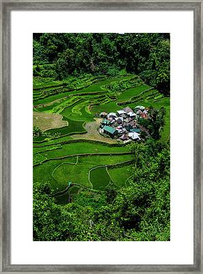 Bangaan In The Rice Terraces Of Banaue Framed Print