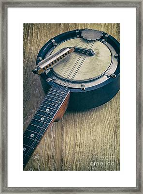 Banjo And Harp Framed Print