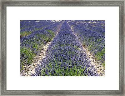 Banon, Provence, France Framed Print by Sergio Pitamitz