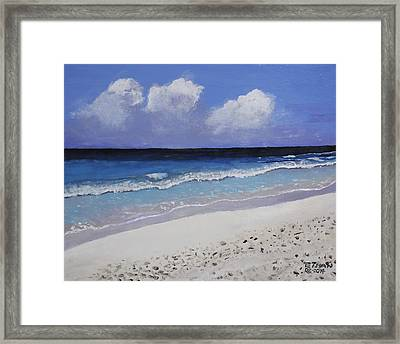 Barbados Beach Framed Print by Ethan Altshuler