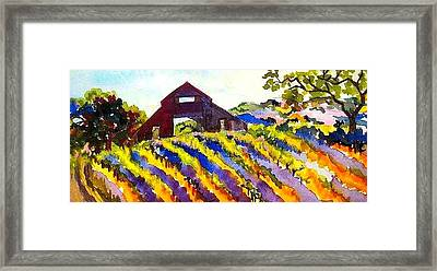 Barn In Sonoma Framed Print