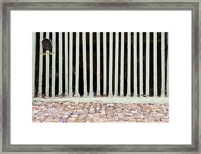 Bars Framed Print
