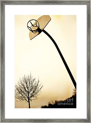 Basketball Net Framed Print by Birgit Tyrrell