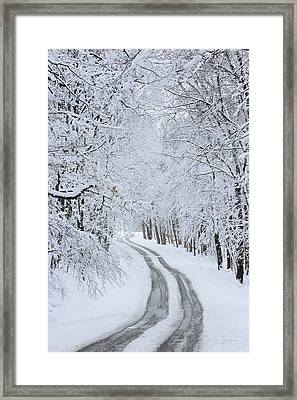 Basswood Drive Framed Print