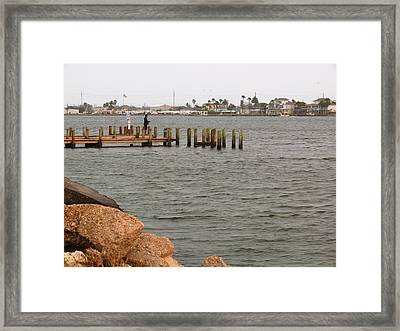 Bay Fishing Framed Print
