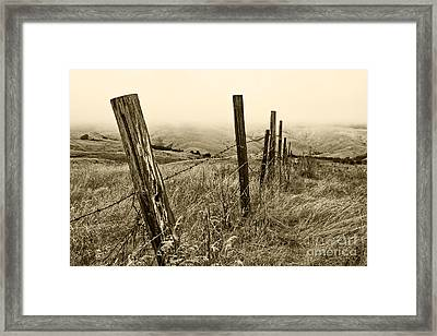 Bay Hill Road Framed Print