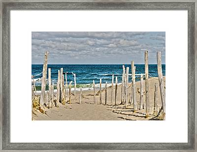 Beach At Cape Cod Framed Print by Patricia Hofmeester