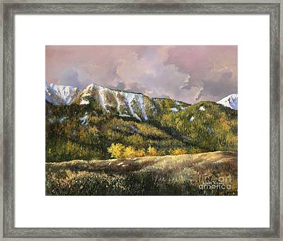 Framed Print featuring the painting Bear Claw by Lynne Wright