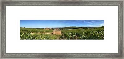Beaujolais Vineyard, Saules Framed Print by Panoramic Images