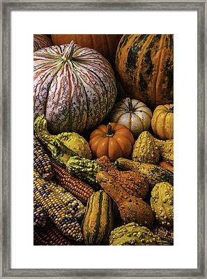Beautiful Autumn Harvest Framed Print by Garry Gay