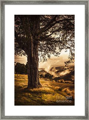 Beautiful Autumn Tree Landscape In A Serene Park Framed Print by Jorgo Photography - Wall Art Gallery