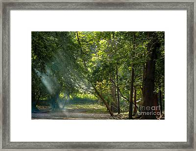 Beautiful Morning Framed Print