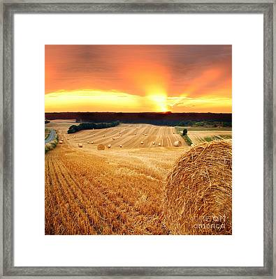 Beautiful Straw Bales Framed Print by Boon Mee