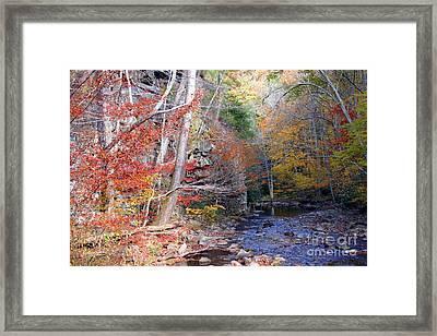 Beaverdam Creek Framed Print