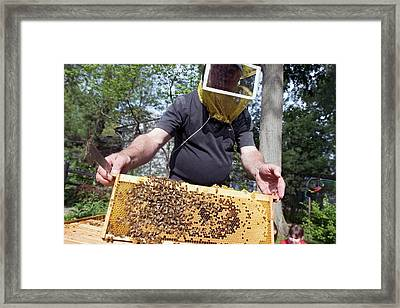 Beekeeping Class Framed Print
