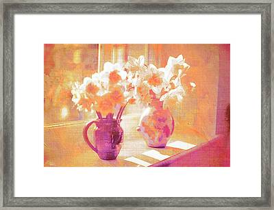 Beethovens Window Sill Framed Print