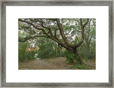 Behind The House Framed Print by Jon Glaser