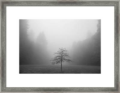 Being Centered Framed Print