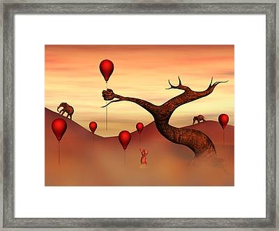 Believe What You See Framed Print