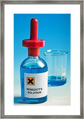 Benedict's Solution Framed Print