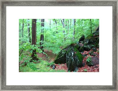 Framed Print featuring the photograph Beside The Trolley Trail by Dana Sohr