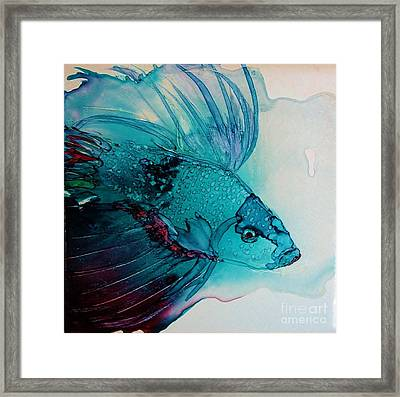 Betta Dragon Fish Framed Print