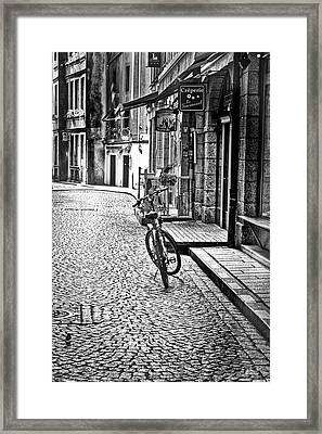 Bicycle And Sparrow 2  Framed Print
