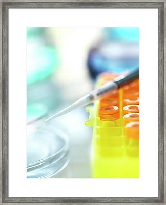 Biomedical Research Framed Print