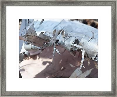 Framed Print featuring the photograph Birch Bark by Gene Cyr