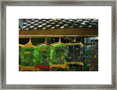 Bird Cages At Ngasem Traditional Bird Framed Print by Keren Su