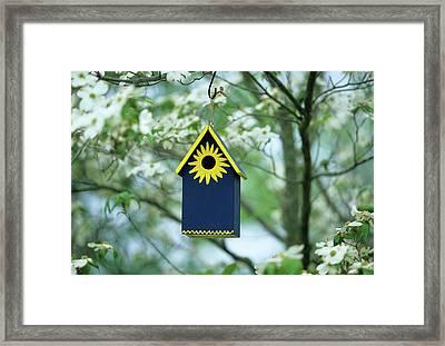 Bird House Nest Box In Flowering Framed Print