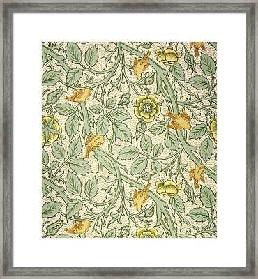 Bird Wallpaper Design Framed Print by William Morris