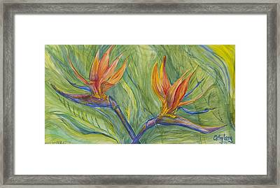 Framed Print featuring the painting Birds Of Paradise by Cathy Long