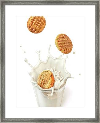 Biscuits Splashing Into Milk Framed Print by Leonello Calvetti