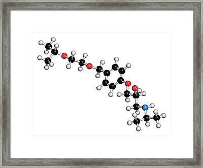 Bisoprolol Beta Blocker Drug Molecule Framed Print by Molekuul