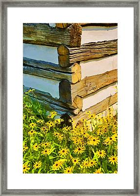 Framed Print featuring the photograph Black-eyed Susans by Dana Sohr