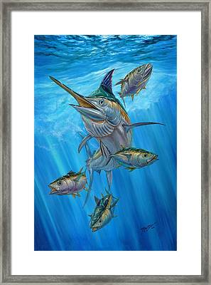 Black Marlin And Albacore Framed Print by Terry Fox