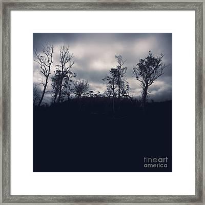 Black Silhouette Trees In Spooky Tasmanian Forest Framed Print