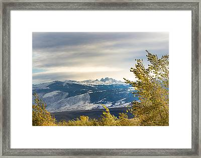 Blacktooth Framed Print
