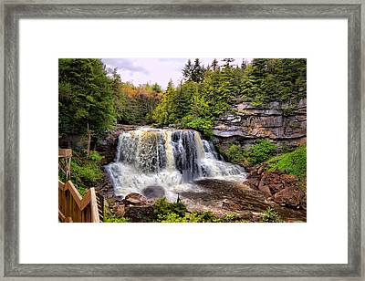 Blackwater Falls Sp Framed Print