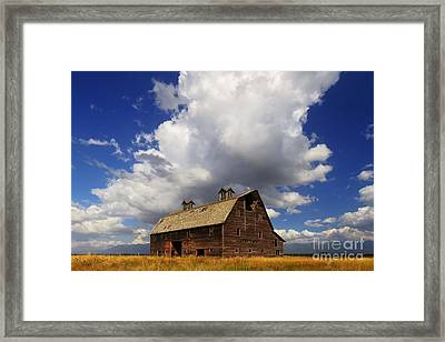 Blasdel Barn Framed Print by Mark Kiver