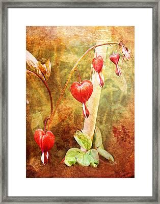 Framed Print featuring the digital art Bleeding Heart by Helene U Taylor