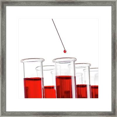 Blood Sample And Test Tubes Framed Print