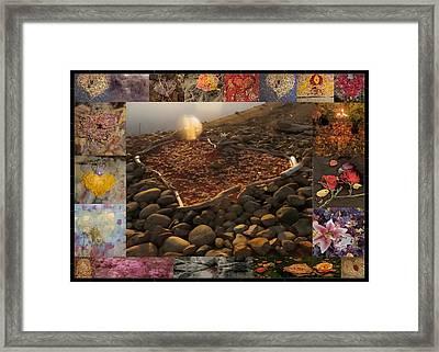 Blossom Rain II Framed Print by Georg Kickinger